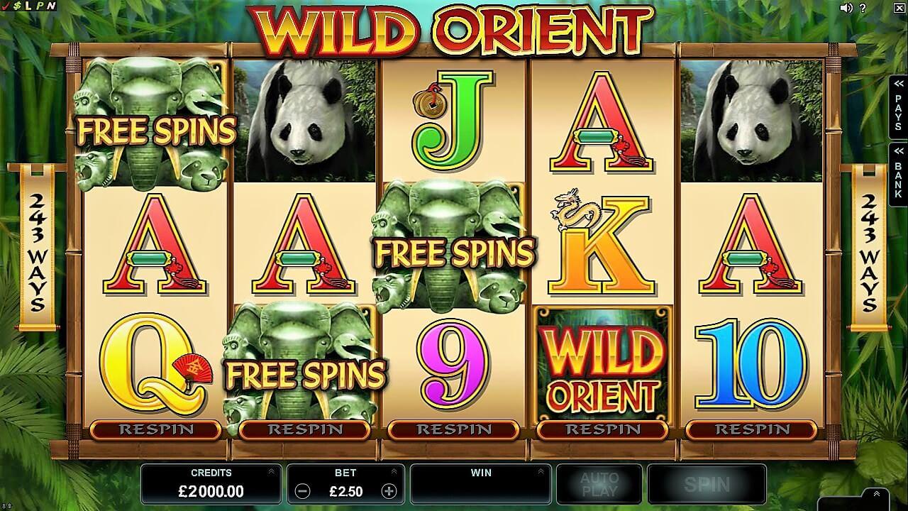 wild orient slots